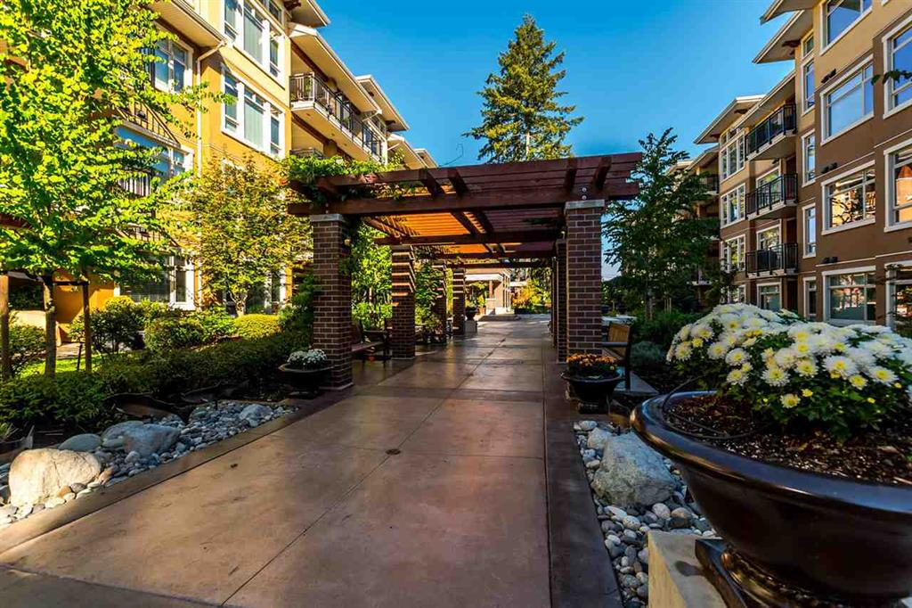 adagio condo white rock (2)